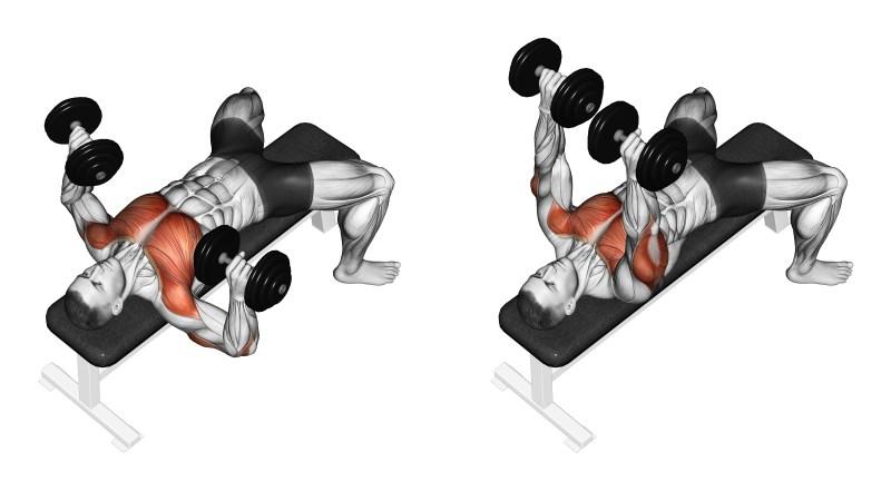 panca sollevamento pesi